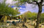 Backyard is Located in McDowell Mountains-Nature's Playground