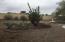 18030 N ALYSSUM Drive, Sun City West, AZ 85375