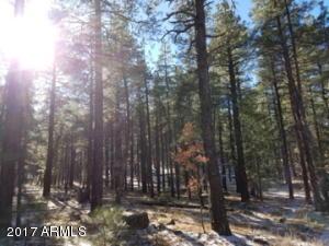 XXXX E Ski Run Road, Williams, AZ 86046