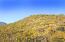14623 E PRAIRIE DOG Trail, 14, Fountain Hills, AZ 85268