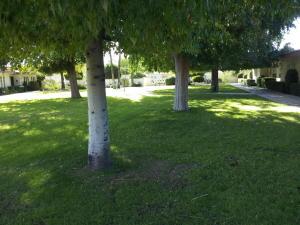 13422 N EMBERWOOD Drive, Sun City, AZ 85351