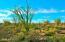 17100 E Lone Mountain Road, -, Rio Verde, AZ 85263