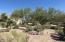 Front Sonoran scape