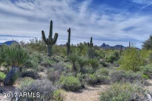 29037 N 106th Way, 45, Scottsdale, AZ 85262