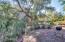 6411 S RIVER Drive, 51, Tempe, AZ 85283