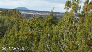 LOT 66 Ranch Road Lot 66, Vernon, AZ 85940
