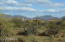 Driving into subdivision or a leisure walk; the views are all Arizona!! Mountains, Natural Desert, Beautiful Cactus!