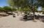 Sides to Desert Landscaped Wash Area