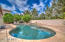 large pool with low maintenance back yard
