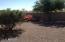 backyard fenced in all around desert landscaping