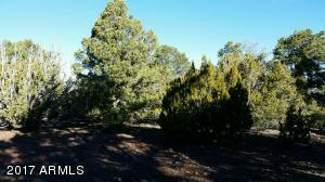 Lot 33 Ricks Road Lot 33, Vernon, AZ 85940