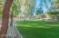Shaded grassy LaVida park