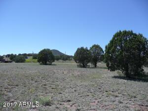 425 S Rolling Hills Road, 0, Young, AZ 85554
