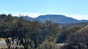 18092 S HENRY COE Road, 99, Peeples Valley, AZ 86332