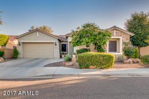 18141 W LAS PALMARITAS Drive, Waddell, AZ 85355