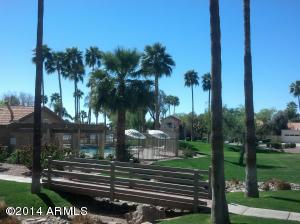 1232 W Pacific  Drive Gilbert, AZ 85233