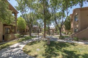 15095 N THOMPSON PEAK Parkway, 3115, Scottsdale, AZ 85260