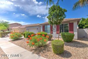1826 E FAWN Drive, Phoenix, AZ 85042
