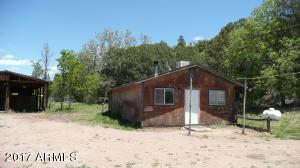 299 E Granny Jones Lane, Young, AZ 85554