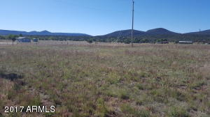 47223 N 288 Highway, B, Young, AZ 85554