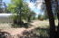530 E Neaglin Crossing, Young, AZ 85554