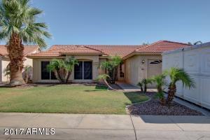 446 W Primoroso  Drive Gilbert, AZ 85233