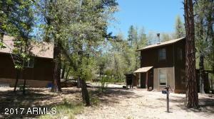 133 E Sharps Drive, Young, AZ 85554