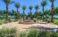 Prominent fountain and palm trees as you enter the Higley Park Community,
