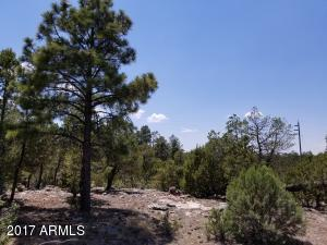 7205 MOGOLLON Trail Lot 158, Happy Jack, AZ 86024