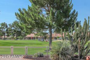 11009 E TWILIGHT Court, Sun Lakes, AZ 85248