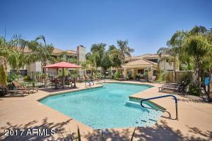 9990 N Scottsdale  Road Unit 2050 Scottsdale, AZ 85253