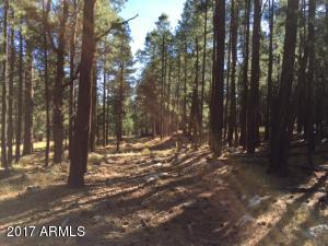 0 FR 56, - Ranch 3 Road, Forest Lakes, AZ 85931
