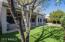 Backyard/ Turf Grass