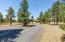 571 E Hattie Greene, Flagstaff, AZ 86001