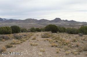 Lot 231 Bacanora Trail Lot 231, Wikieup, AZ 85360