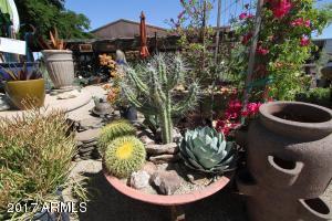 33840 N CAVE CREEK Road, Cave Creek, AZ 85331
