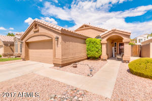 937 S Sailfish  Drive Gilbert, AZ 85233