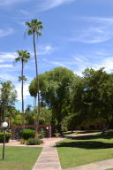 3825 E Camelback  Road Unit 102 Phoenix, AZ 85018