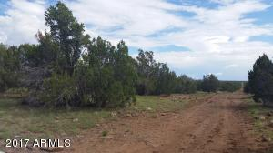 1575 Kb Ranch Road Lot 162, Show Low, AZ 85901