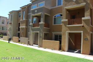 240 W JUNIPER Avenue, 1134, Gilbert, AZ 85233