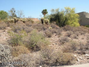 15704 E SYCAMORE Drive, 7, Fountain Hills, AZ 85268