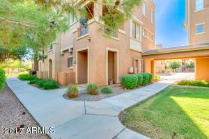 240 W JUNIPER Avenue, 1007, Gilbert, AZ 85233