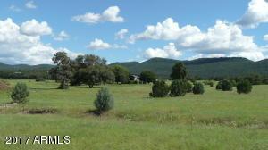 499 S Rolling HIlls Road, -, Young, AZ 85554