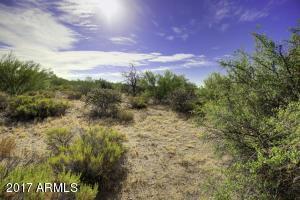36484 N 110TH Way, 81, Scottsdale, AZ 85262