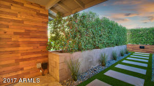 Ficus trees provide privacy, shade, and help block any noise.