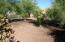 Backyard 1b