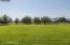 Back Pasture Area