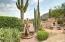 Fabulous desert landscaping.