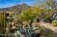 Cactus garden views of Black Mountain