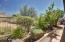 Side yard garden area.